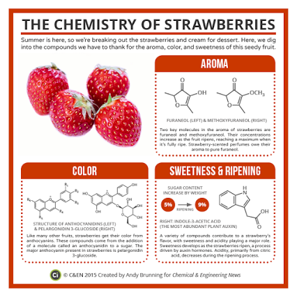 Compound Interest Google Teaching Chemistry Science Chemistry Organic Chemistry
