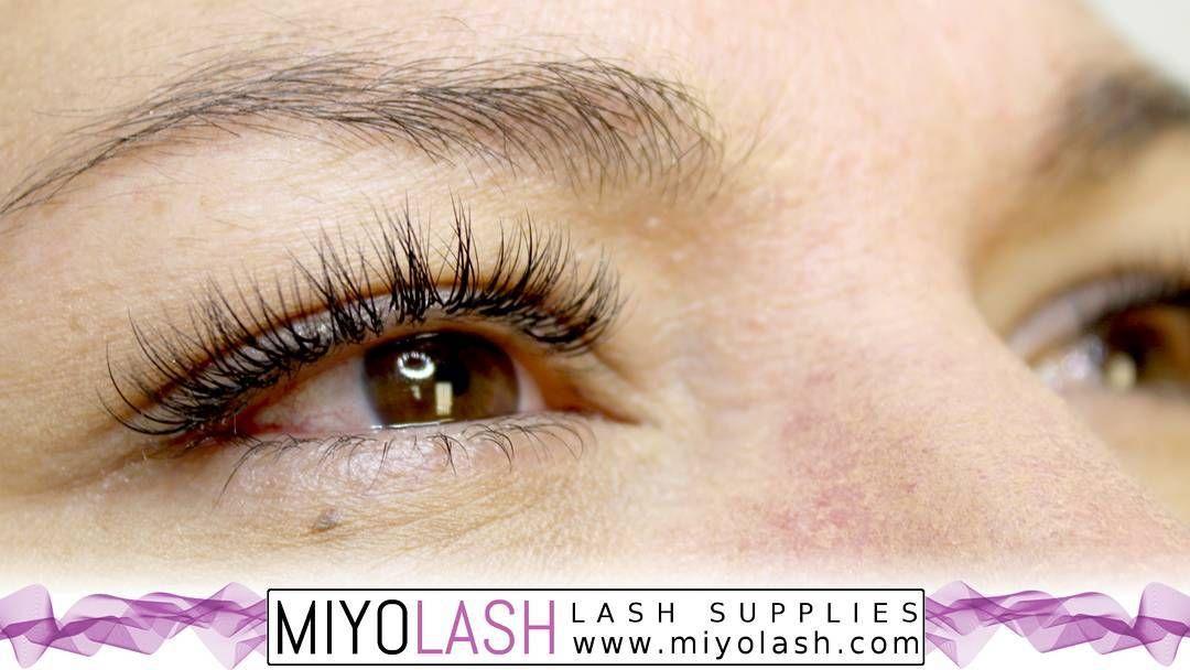 Hybrid Lashes | Cosmetics | Lashes, Eyelash extension supplies