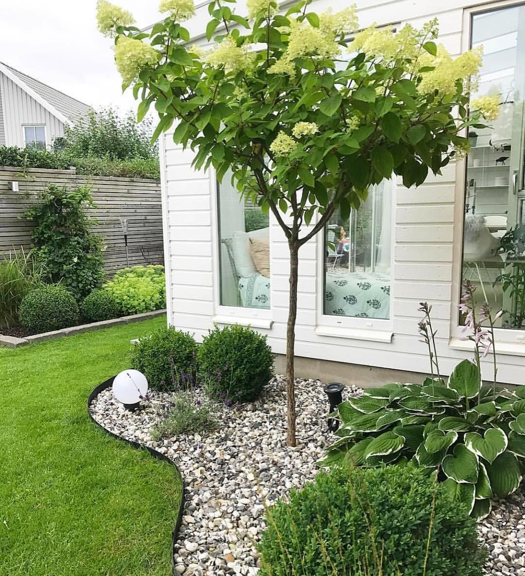 Incroyable Small Patch Landscaping