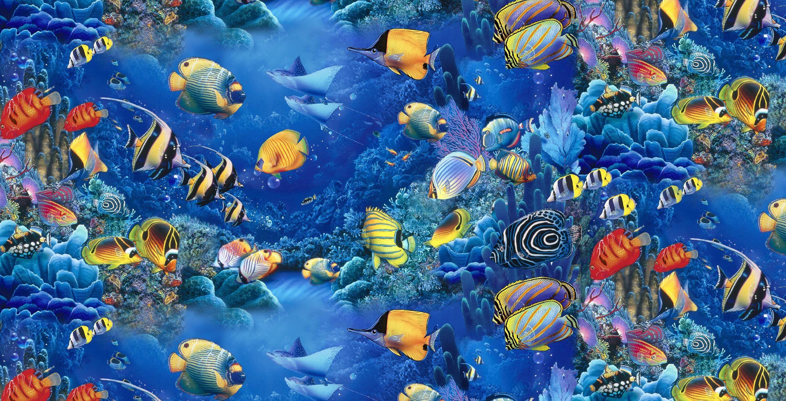 fish under the sea - Buscar con Google