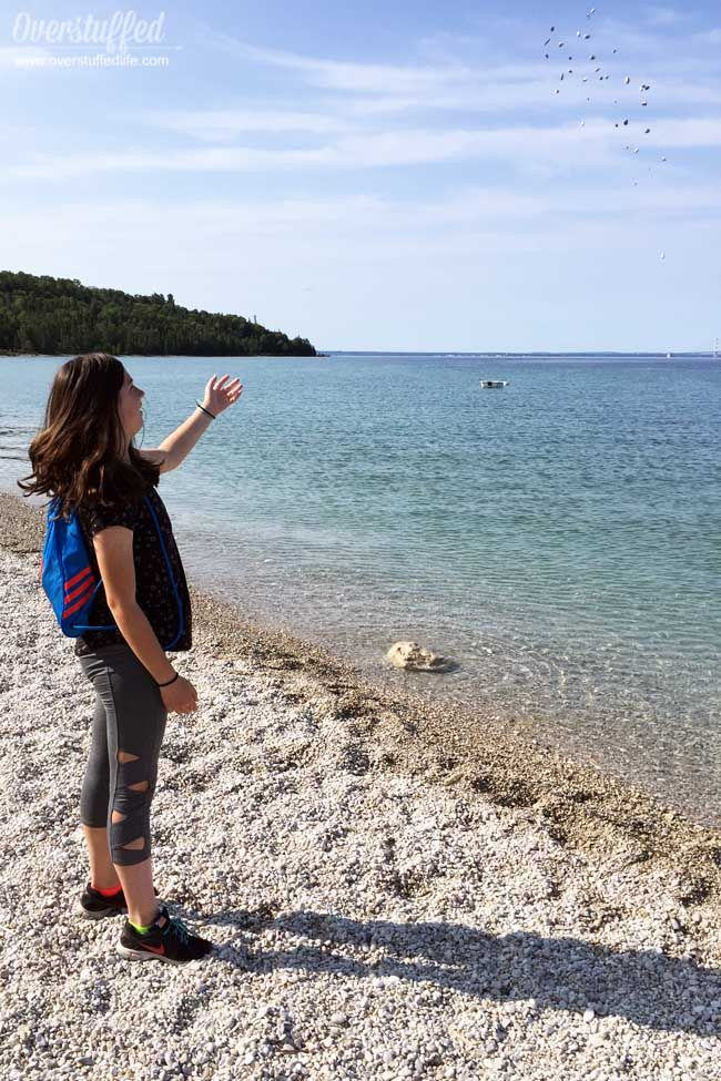 British Landing On Mackinac Island Is A Historical Beach Spot Where You Can Swim Learn About History Find Cool Ro Mackinac Island Mackinac Cheap Things To Do