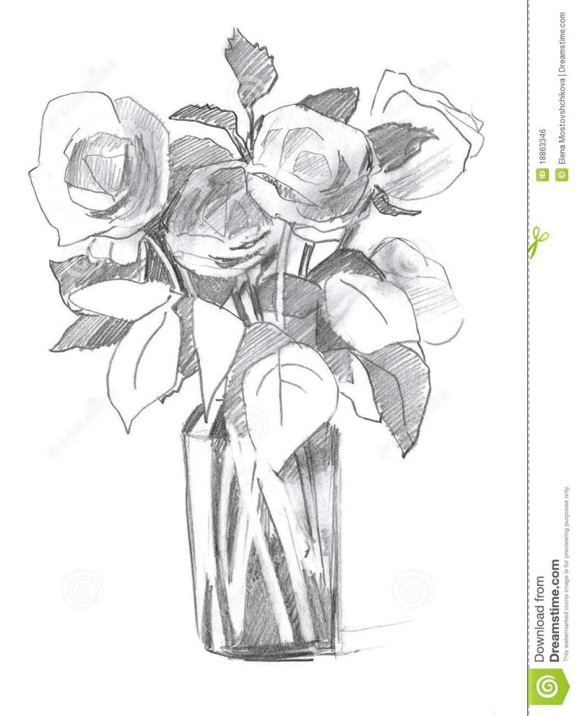 Pencil Drawing Of Flower Vase With Flowers Pencil Sketch Rose In Vase Royalty Free Stock Image Image 1 Flower Drawing Flower Sketch Images Easy Hand Drawings
