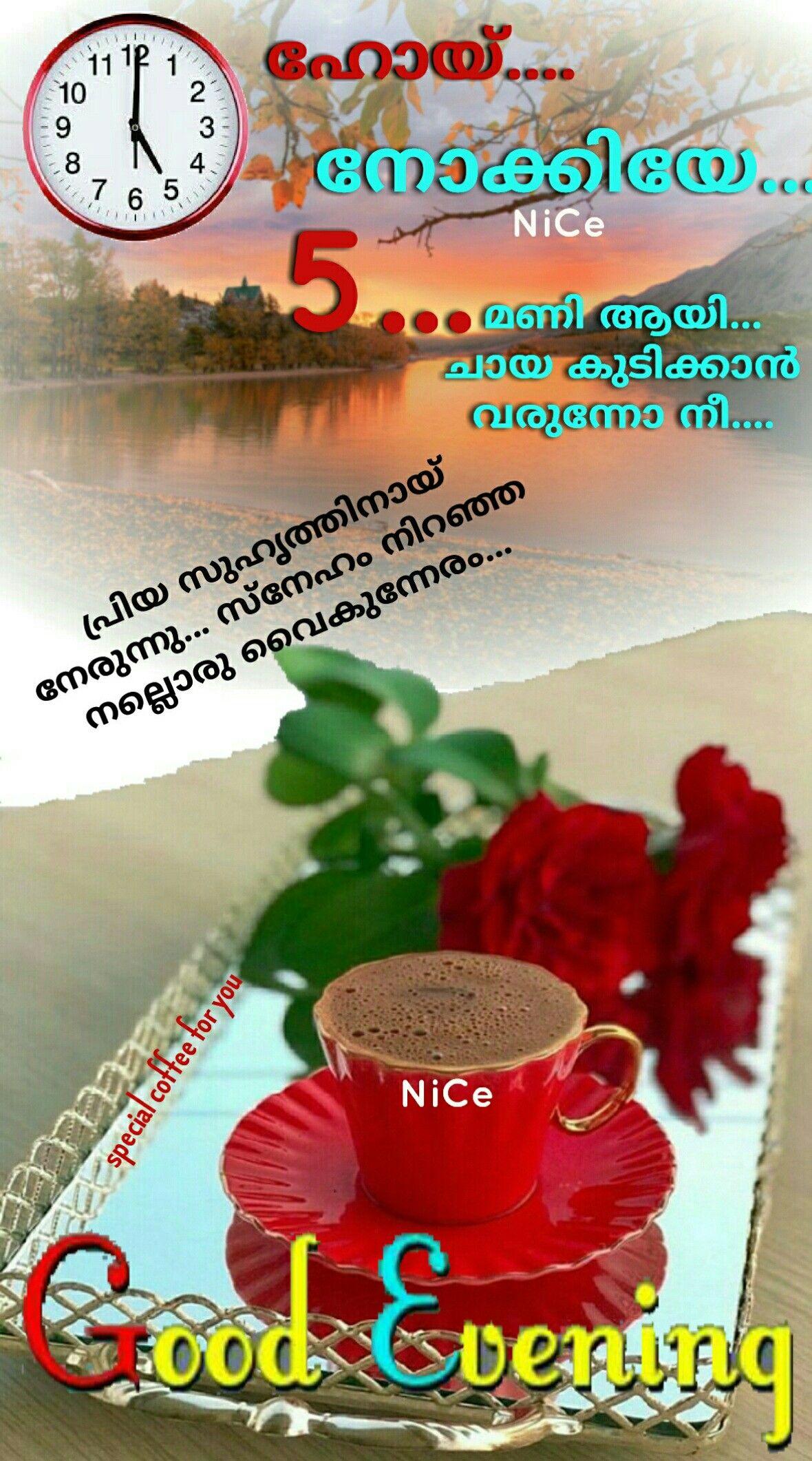 Pin by Aket Ket on Good Evening Good evening, Best, Evening