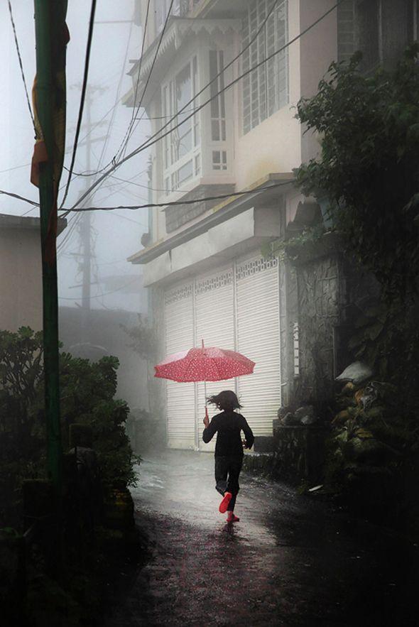 red paraplu