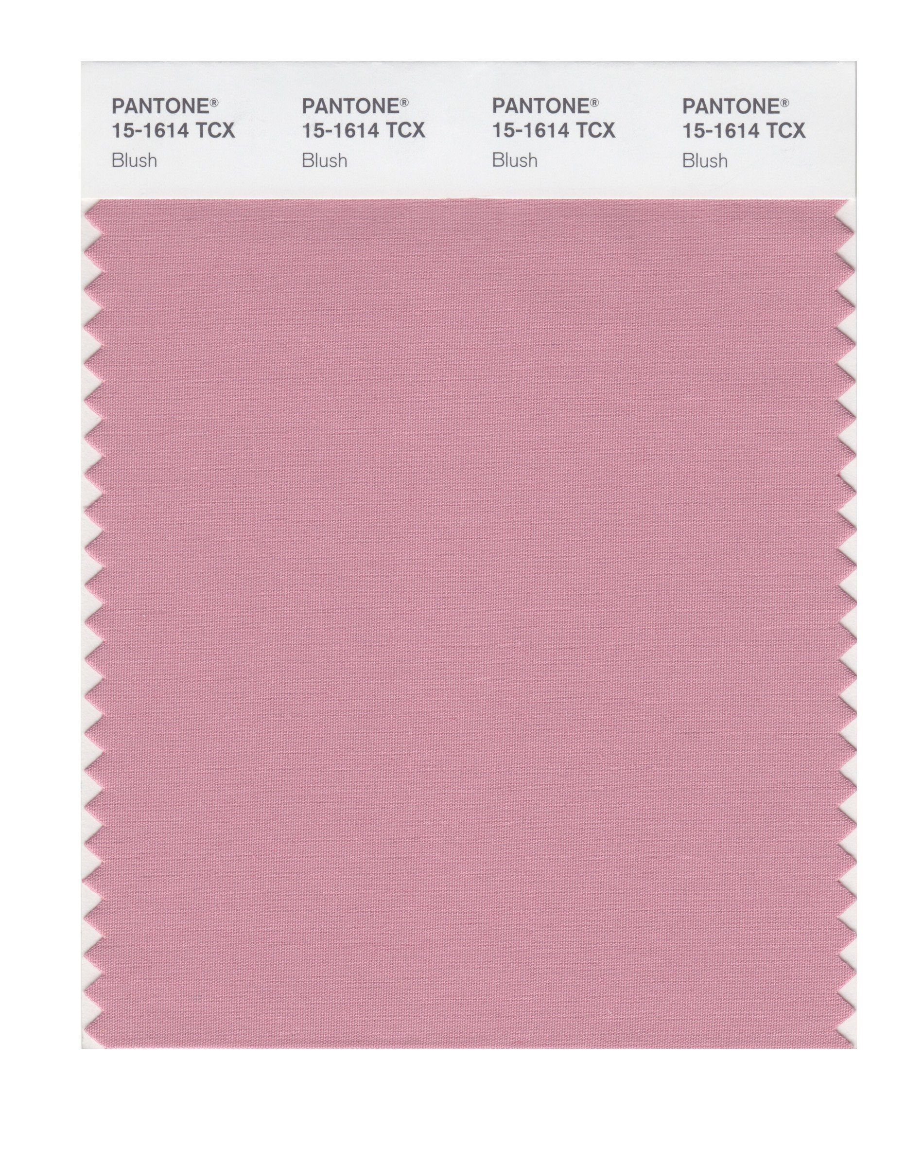PANTONE SMART 15-2215X Color Swatch Card, Begonia Pink - House Pai ...