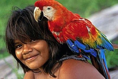 Parrot Love | Indigenous peoples of the americas, Indigenous peoples, People of the world