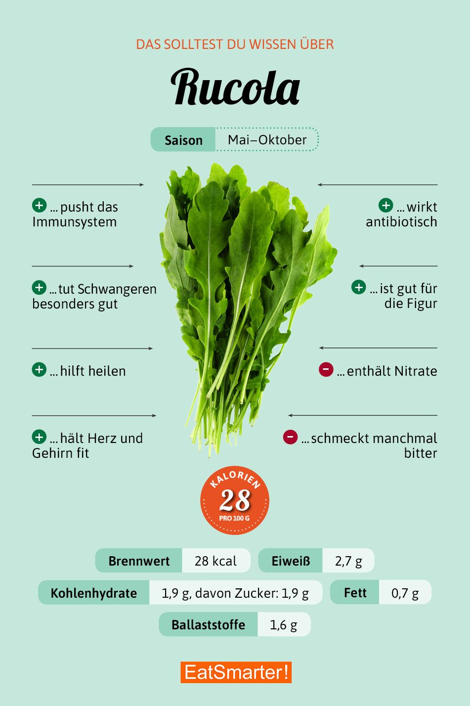 darum ist rucola so gesund und lecker infografiken pinterest ern hrung lebensmittel. Black Bedroom Furniture Sets. Home Design Ideas