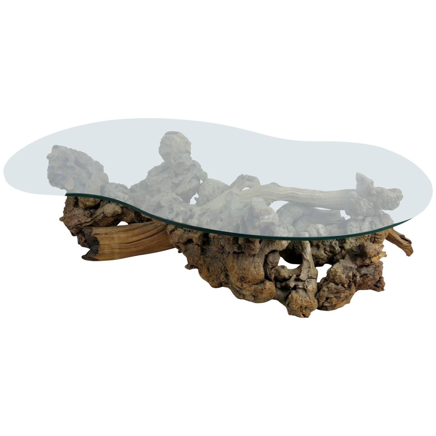 Root Burl Driftwood Coffee Table with Free Form Glass Top