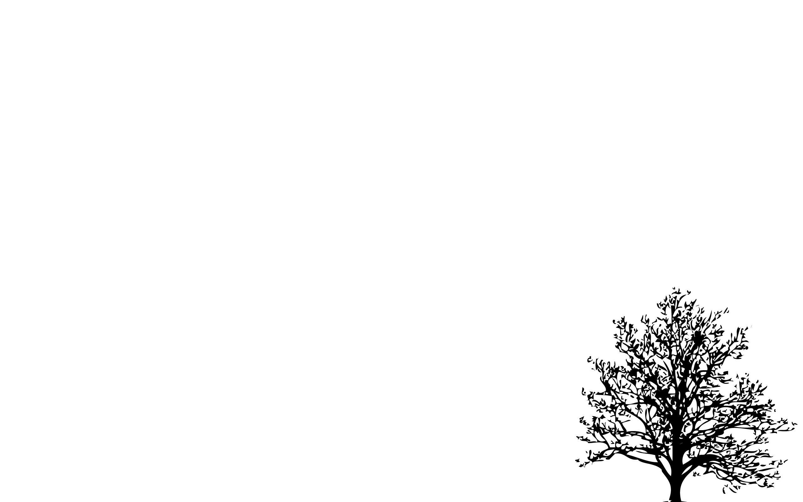 Minimalistic Simple Background Trees White 2560x1600 White Background Wallpaper Minimalist Wallpaper Minimalist Desktop Wallpaper
