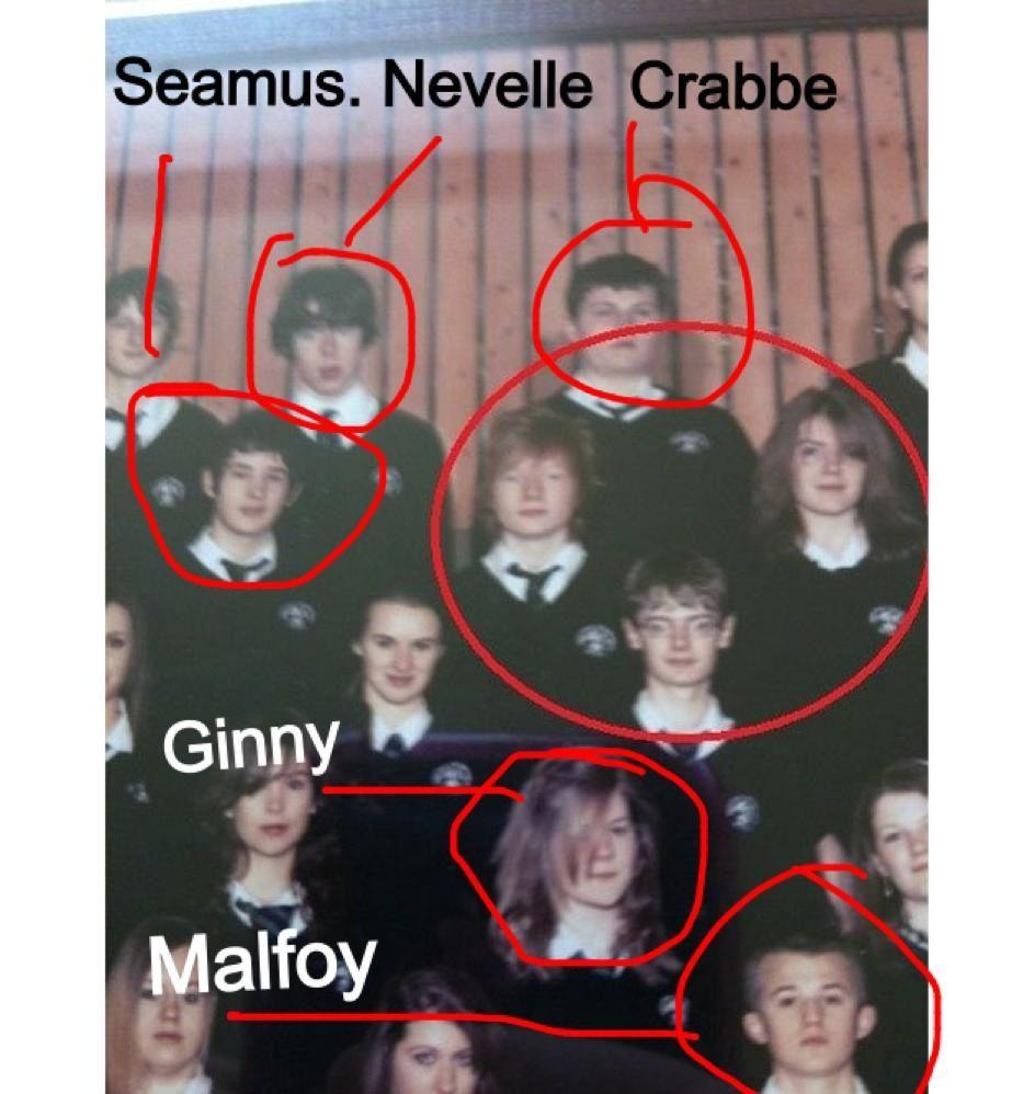 Found Them All Harry Potter Ron Harry Potter Funny Harry Potter Jokes