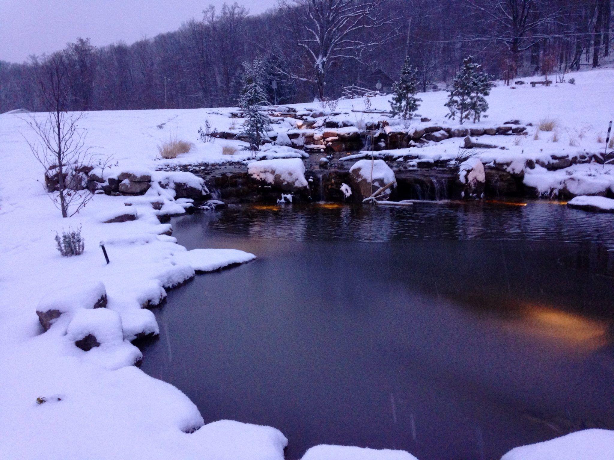 Diy Pond Winter Leaf Cover Build Diy Pond Ponds Backyard Pond Covers