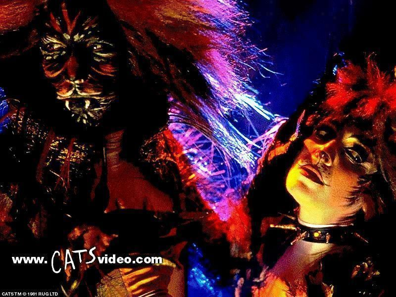 Macavity And Demeter!!! Cats musical, Cat books, Musicals