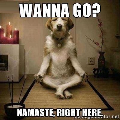 5bb29af8a94543a20082970d02a273a5 wanna go? namaste, right here the yoga dog meme generator