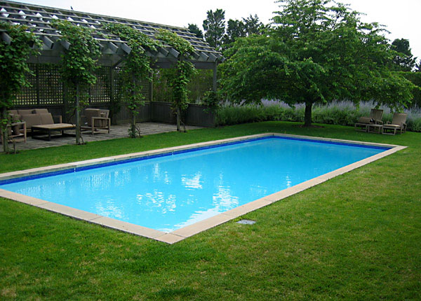 Rectangle Pool Love The Grass And Arbor With Creeping Vibe Rectangle Pool Pool Landscaping Pool Shapes