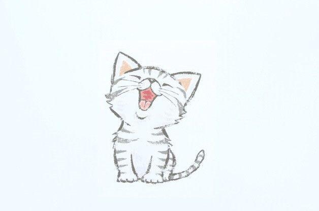Cat American Shorthair Zeichenvorlagen Zeichnungen Und