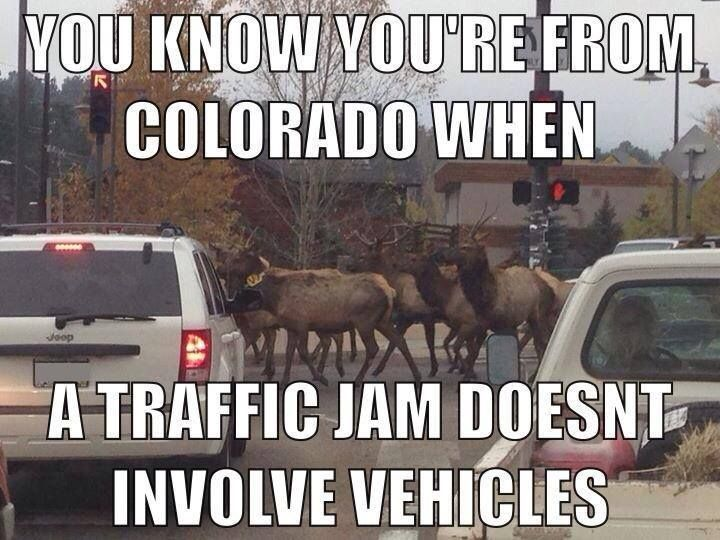 Accidents and rush hour aren't always the cause in Colorado