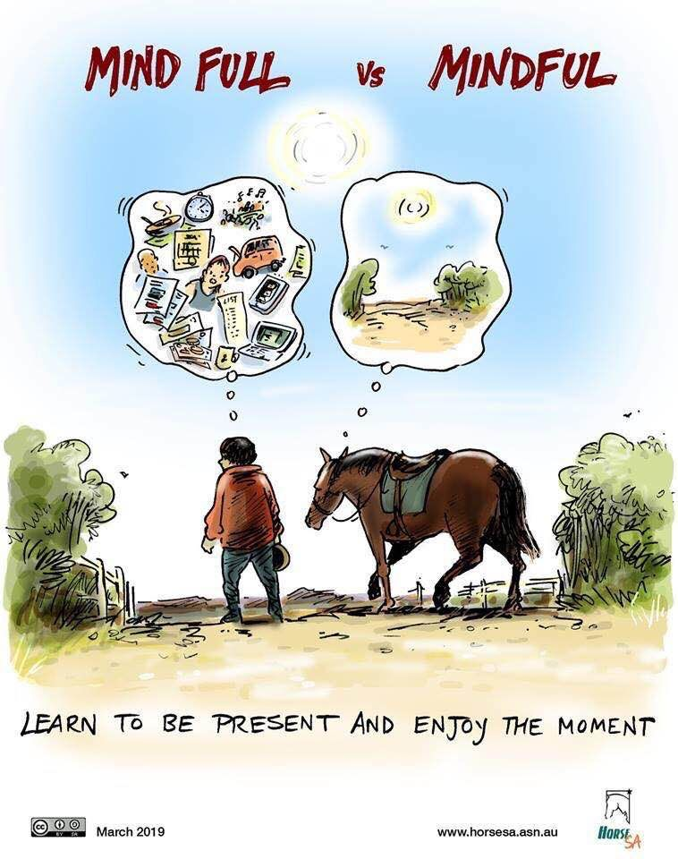 Learn to be present and enjoy the moment... Horse