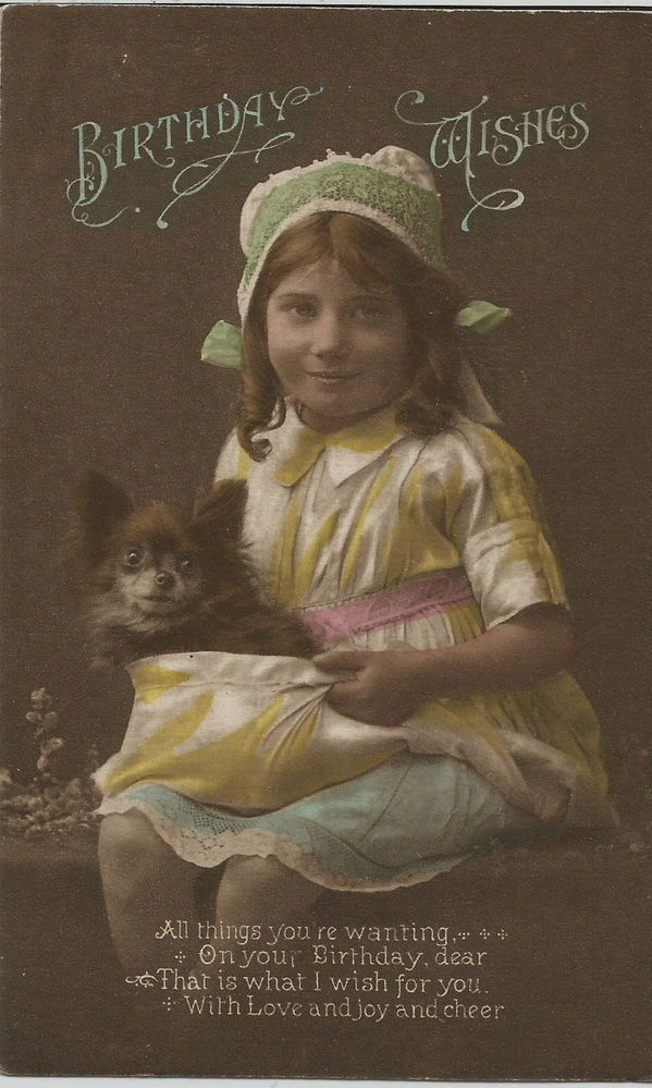 POMERANIAN SPITZ WITH CHILD PHOTOGRAPHIC DOG POSTCARD