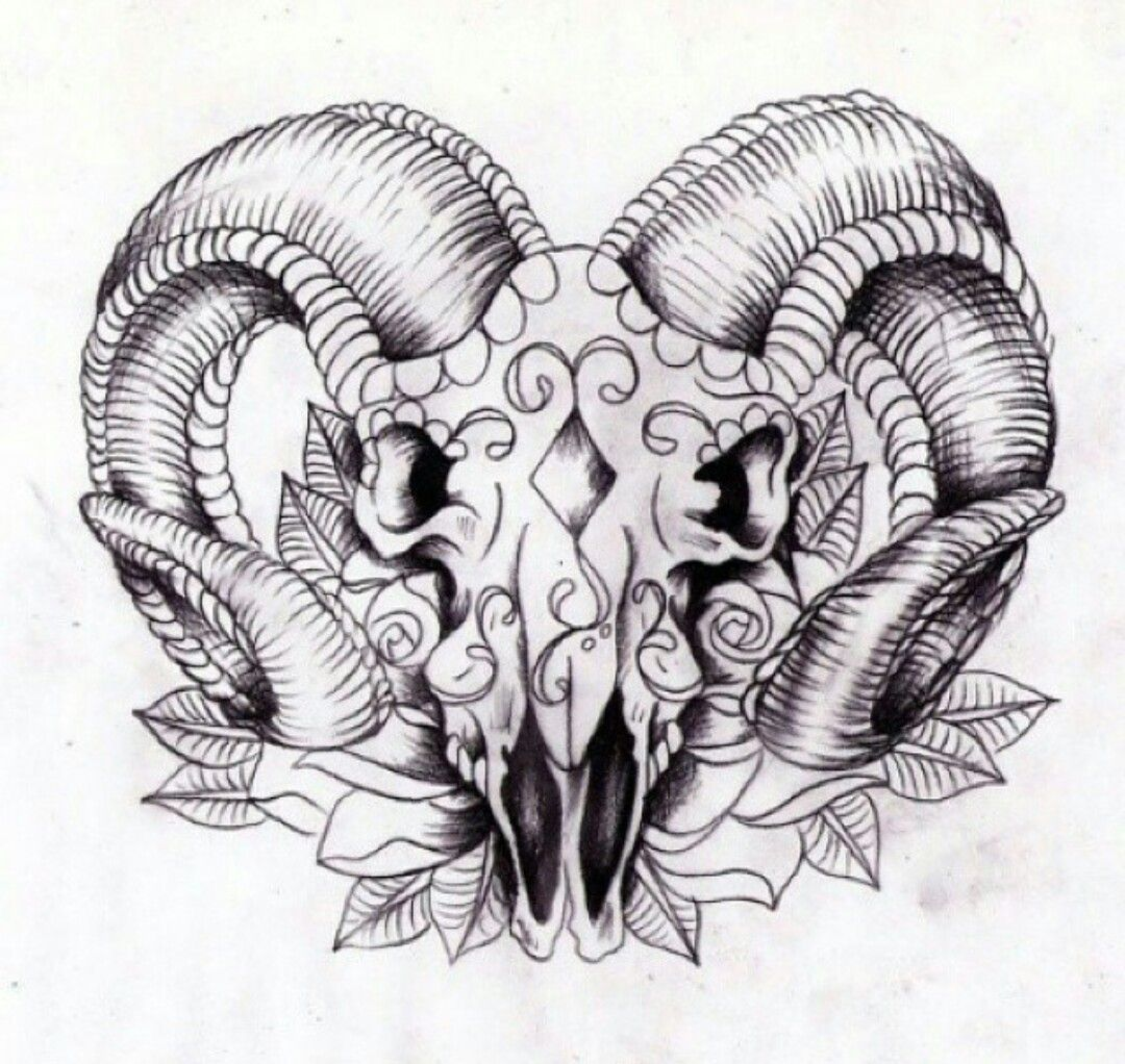 crane de bouc tatouage fille