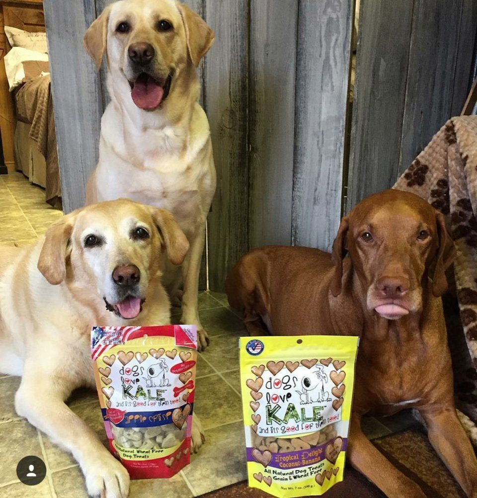 Dogs Love Kale Apple Crisp Pet Snacks 7 Oz See The Image Web Link More Details This Is An Affiliate Link Dogtreats Dog Love Dogs Dog Treats