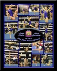 victory gymnastics training center has report cards for