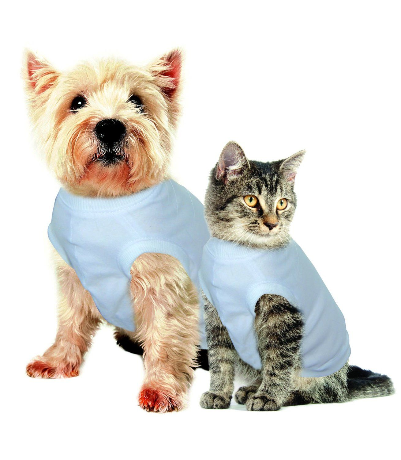 Amazon Com Purrfectly Comfy After Surgery Pet Clothing Small Neck 24 Cm Back Length 33 Cm Chest 36 Cm Pet Su Pet Clothes Pets Personalized Dog Collars