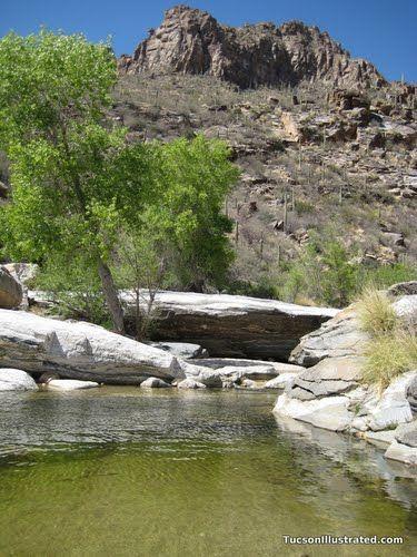500 Arizona Ideas Arizona Arizona Travel Arizona Adventure