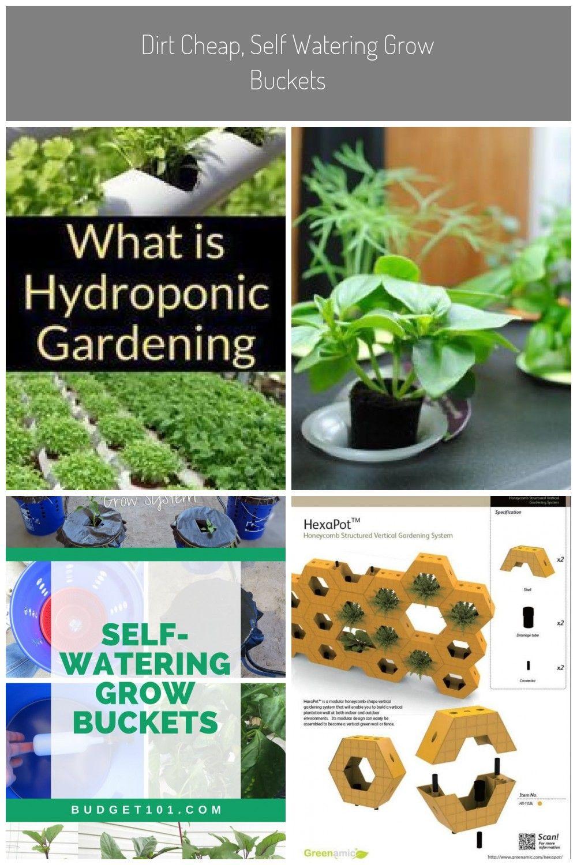 Diy F Gartenbau Hydrokultur Hydroponik Hydroponischer Ist Was Ist Hydroponischer Gartenbau Hydrokultur Diy Hydroponik Hydrokul Hydrokultur Hydroponik Gartenbau
