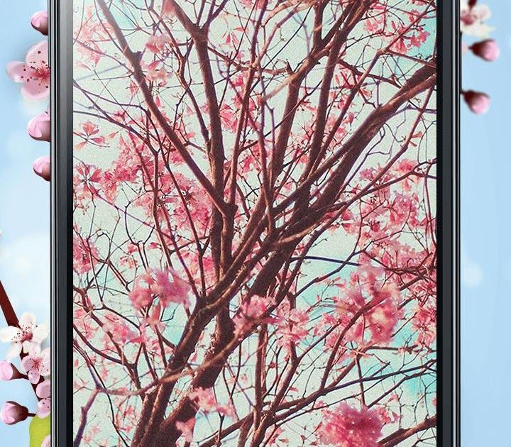 14 Wallpaper Gambar Pemandangan Bunga Sakura Bunga Sakura Tema Dan Wallpaper Hidup For Android Apk Download Download Wa Di 2020 Bunga Sakura Bunga Wallpaper Bunga