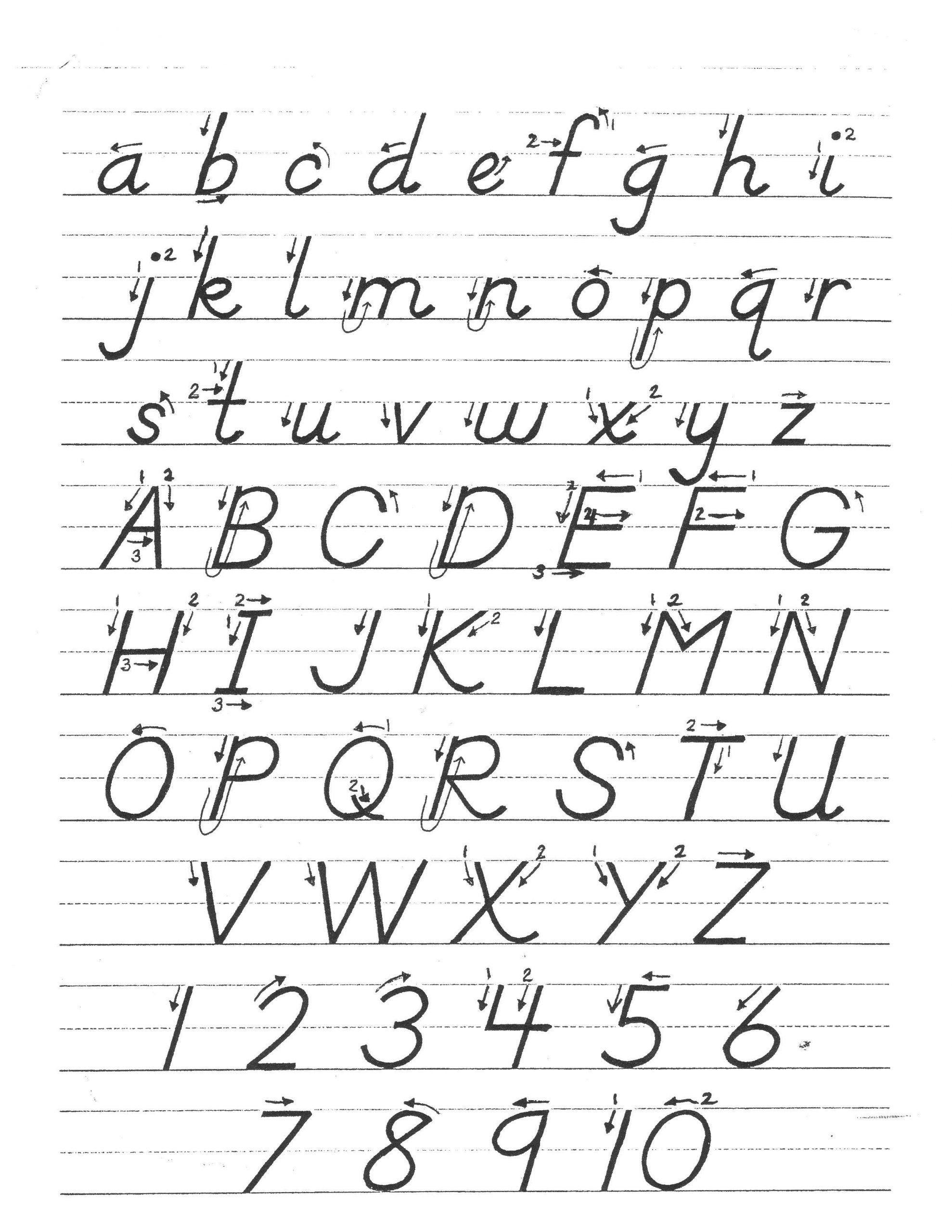 D Nealian Alphabet Worksheets Image Result For D Nealian