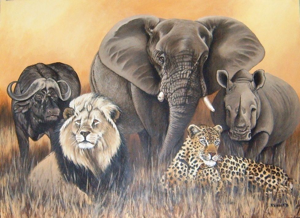 фотографии рисунок зверей африки потолка играет