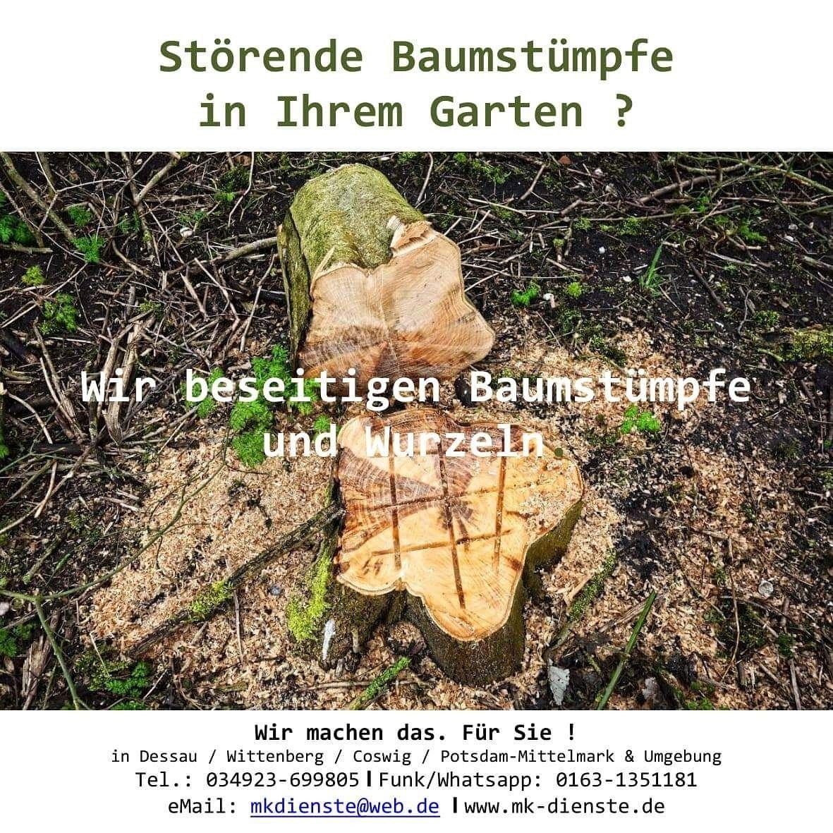Pin Von Matthias Knauft Auf Natur Und Garten Garten Natur Umgebung