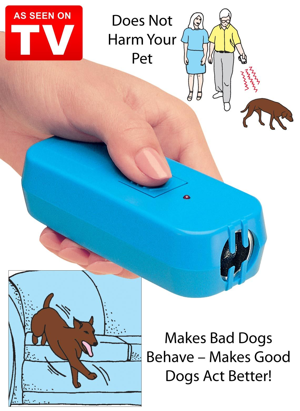 Pet Trainer Pet trainer, Dog teeth cleaning, Can dogs