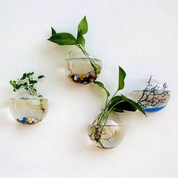 New Glass Wall Planters Indoor Plants Holder Wall Vase Art Wall Decorations Wall Terrarium 1501 Hanging Flower Pots Wall Terrarium Glass Flower Vases