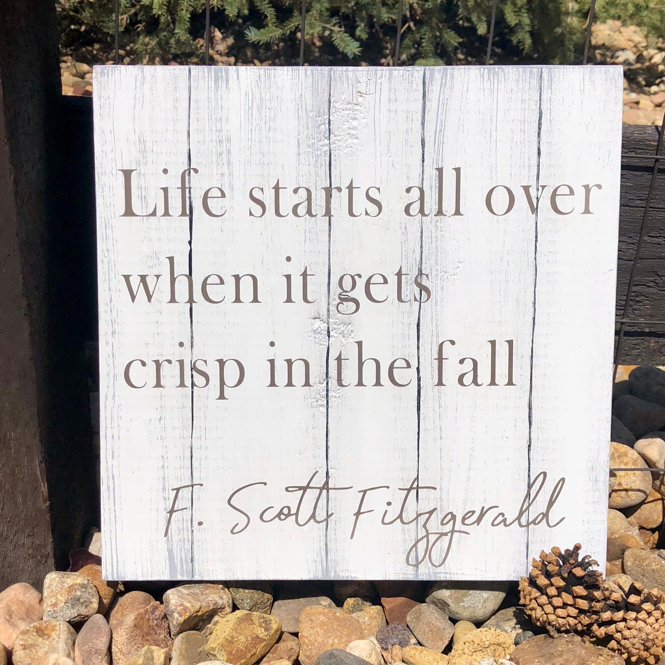 Shiplap Sign Today is a good day for a good day Sign or Completely Custom Shiplap Sign Custom Sign Personalized Sign Farmhouse Sign