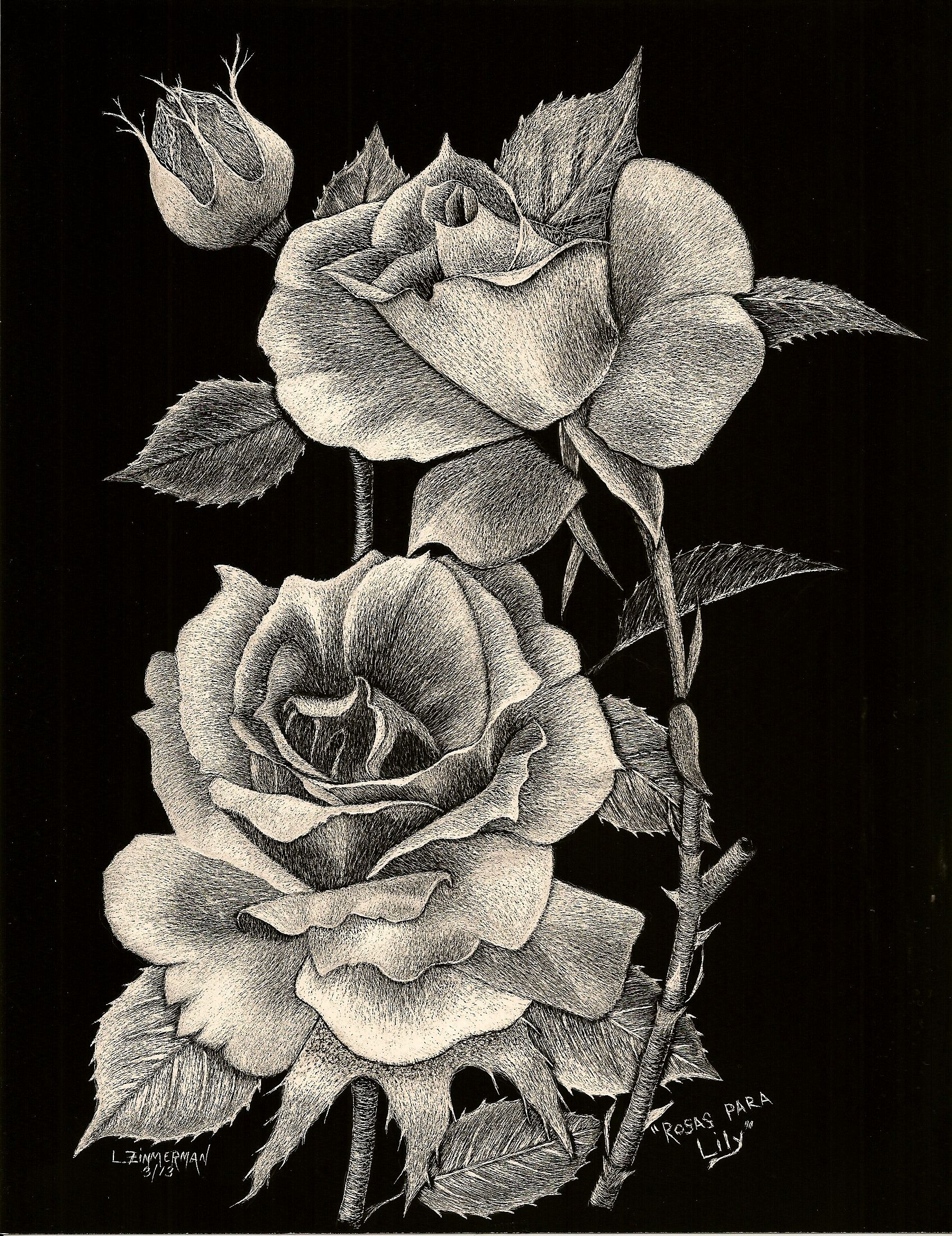 PRINTS Rosas Para Lily