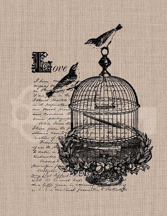 Lovebirds script love birdcage Graphic digital by TanglesGraphics, $1.00