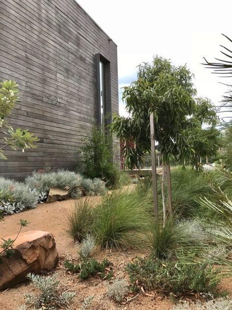 Modern Native Garden | King's Landscaping | Australian ...