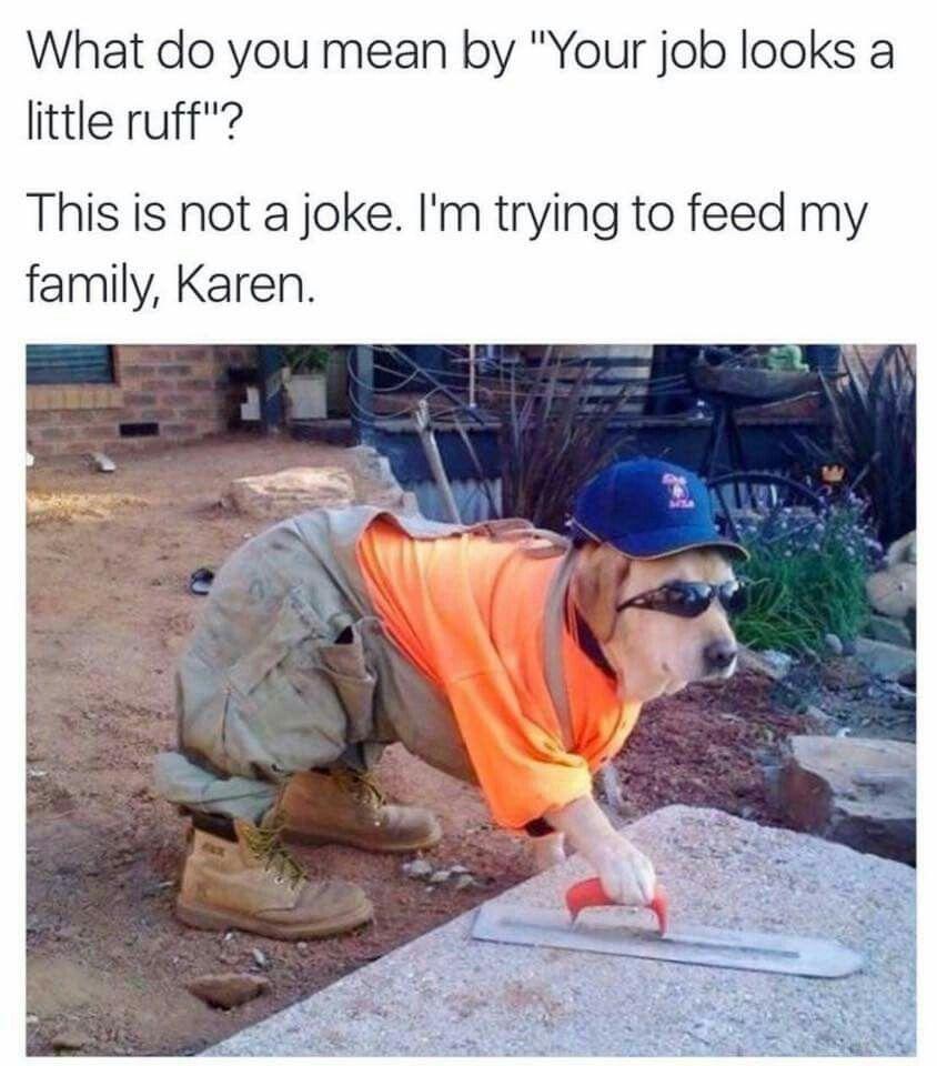 Stfu Karen (With images) Pokemon funny, Memes, Pawsome