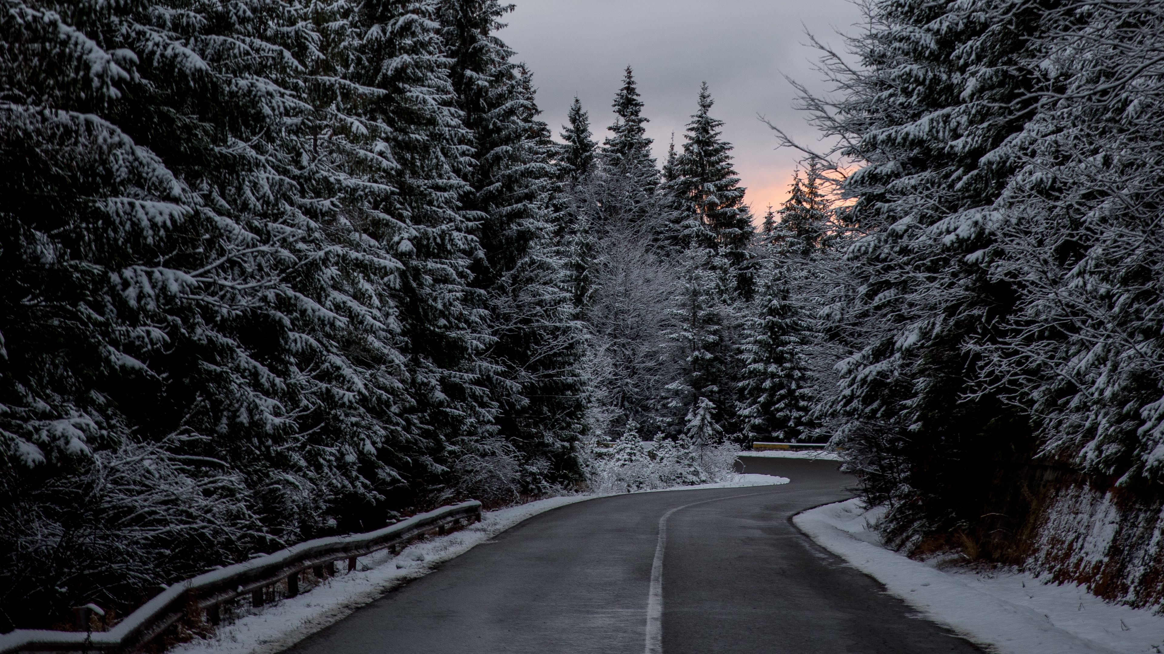 Trees Road Winter Snow 4k Winter Trees Road Nature Wallpaper Background Nature
