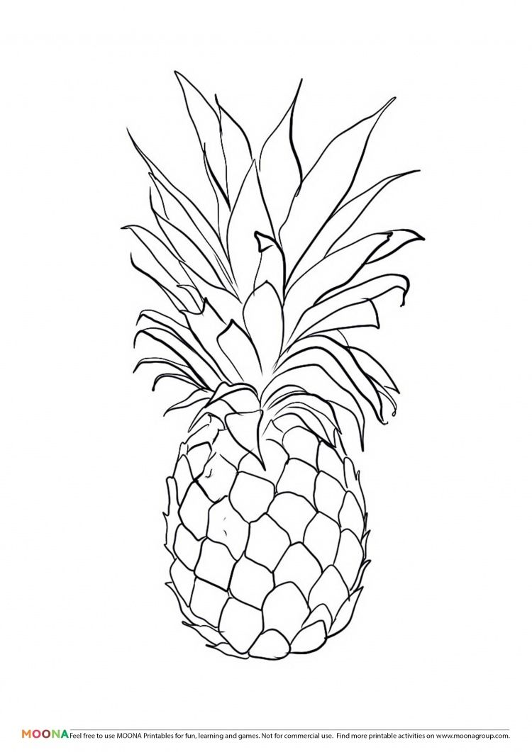 Free Printable Coloring Pages Moona Fruits And Berries Pineapple Drawing Fruit Coloring Pages Coloring Pages