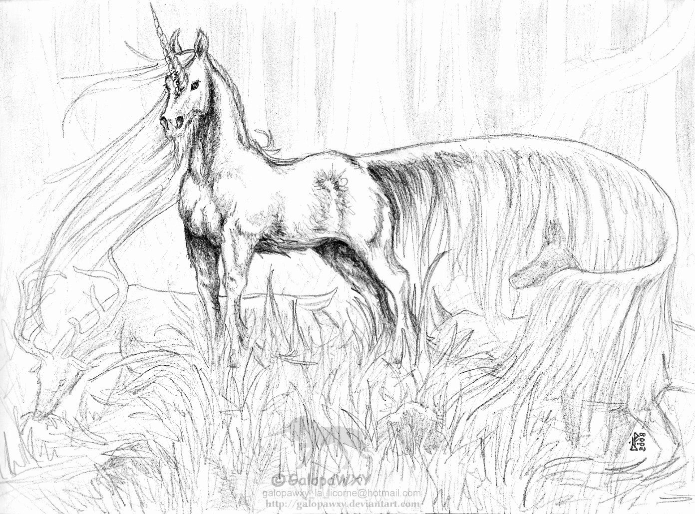 Horses Coloring Pages For Adults Awesome Unicorn Coloring Pages In 2020 Horse Coloring Pages Unicorn Coloring Pages Animal Coloring Books