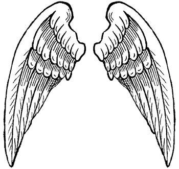 Pictures Of Angel Wings Angel Pictures Angel Wings Images Super Coloring Pages