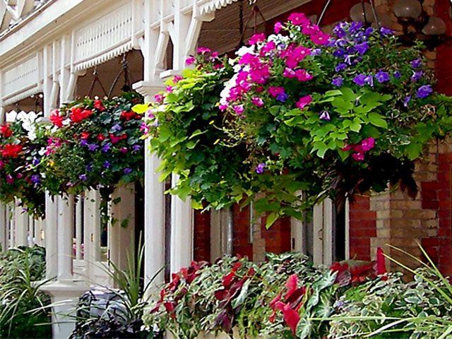 Macetas cubiertas de flores macetas originales para los for Jardin 7 colores bernal