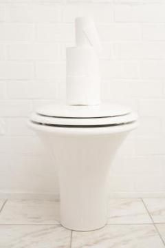 How To Paint A Toilet Seat Hard Water Stains Toilet