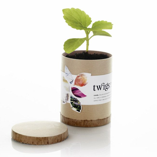 Twigs Plant Boutique on Packaging of the World - Creative Package Design Gallery