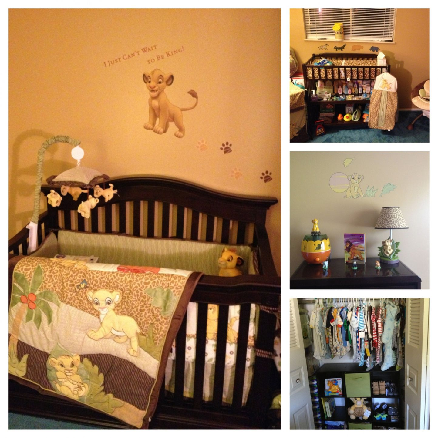 Room Lion King Baby Decorations
