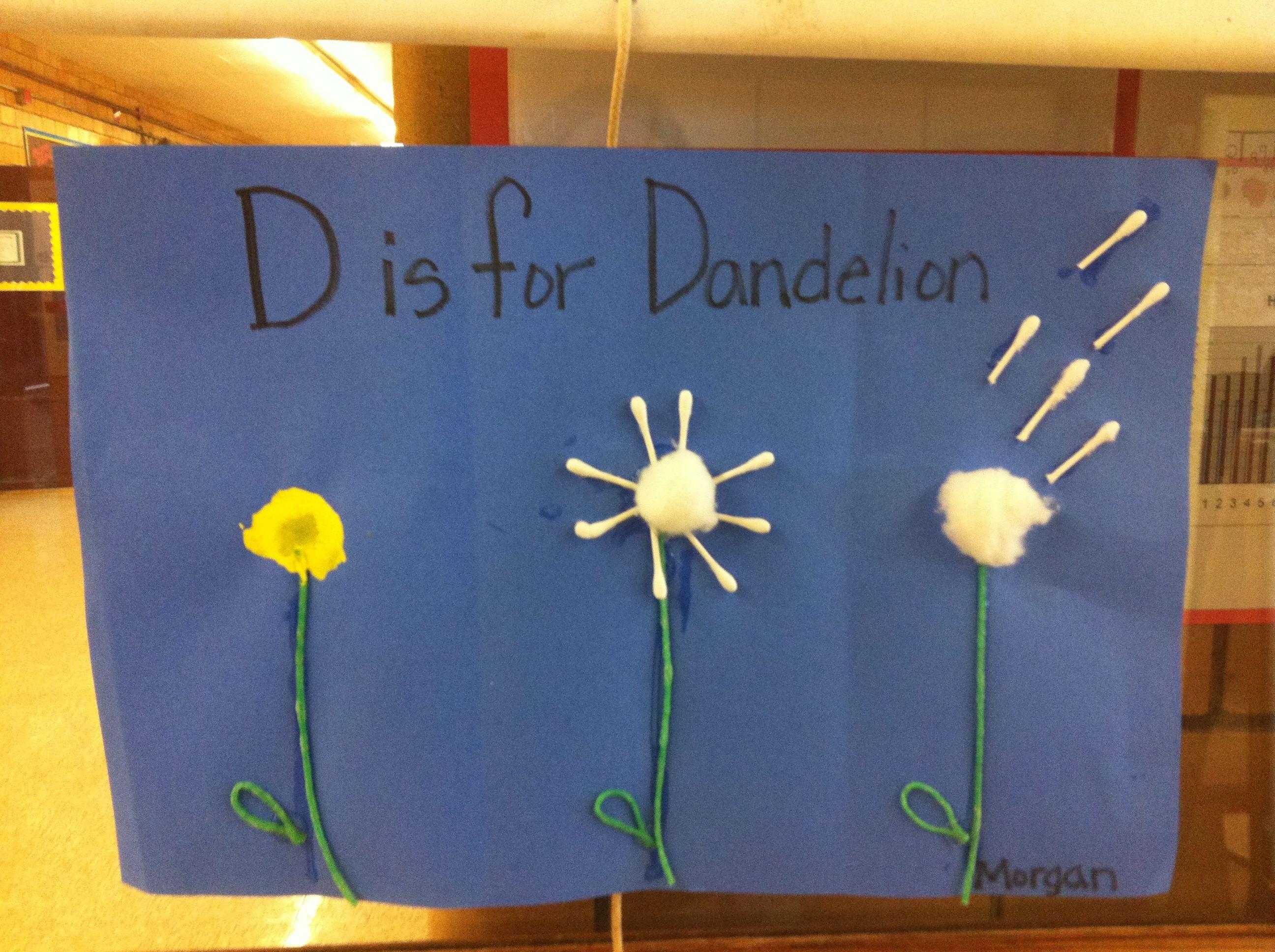 D Is For Dandelion Seed Cycle Plants Preschool