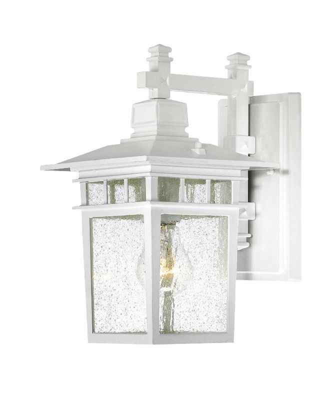 White Outdoor Lights Nuvo Lighting 604951 Cove Neck Singlelight Wall Lantern With Clear