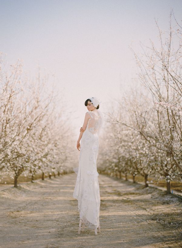 Almond Orchards in Bloom | This Modern Romance